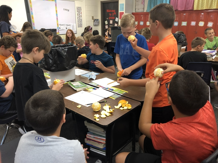 "5th grades ""Orange You Glad You Did This"" geography lesson."